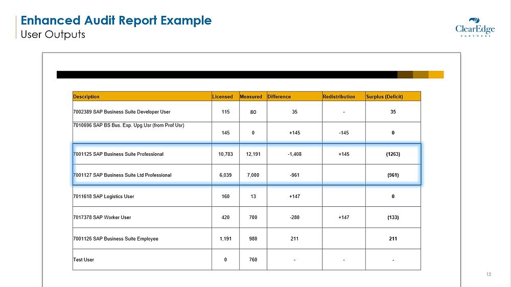 Enhanced Audit Report Example