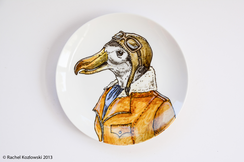 Amelia the Albatross