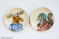 An Unlikely Pair: Moose & Squirrel