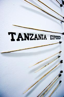 Tanzania Exposed