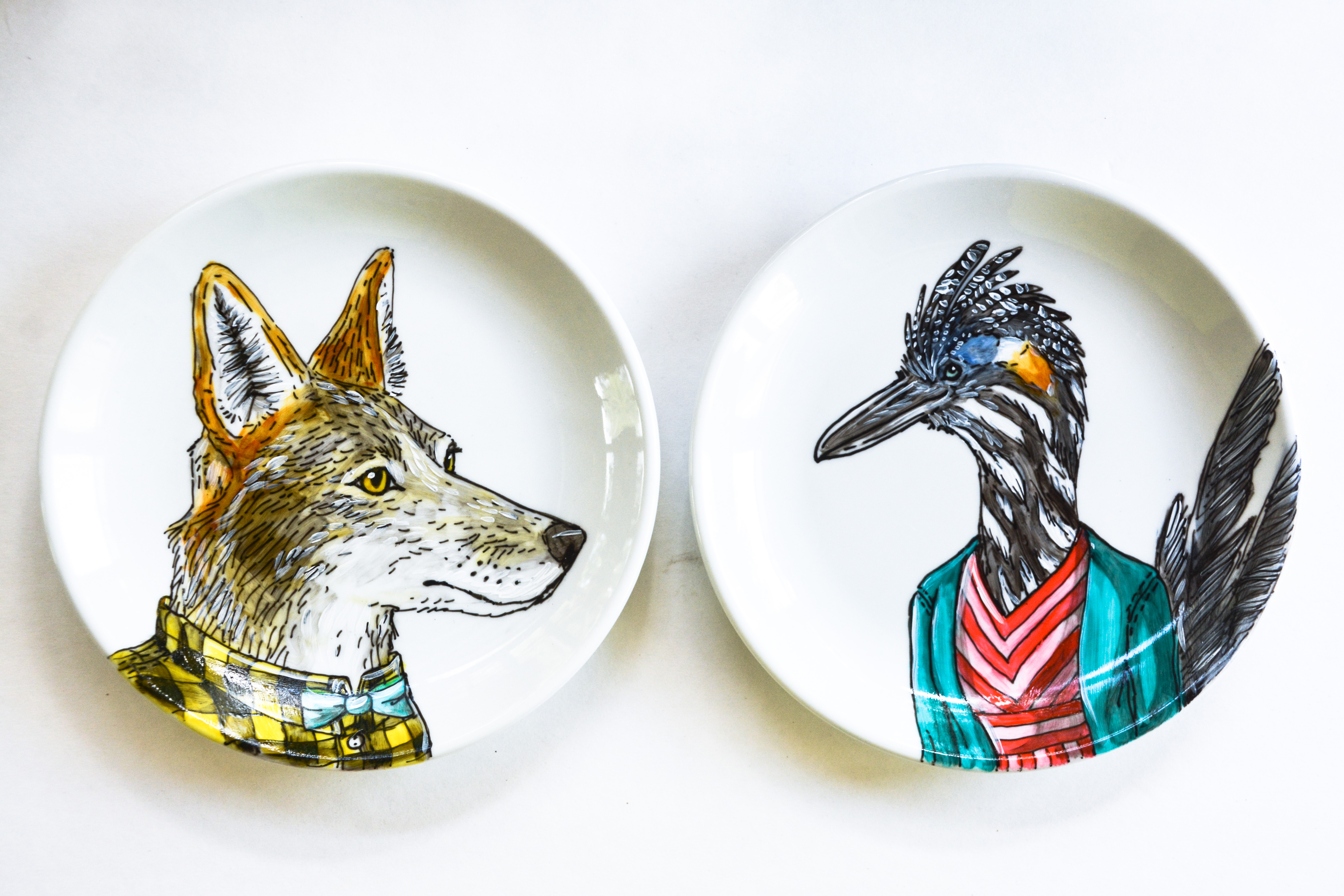 Coyote + Roadrunner