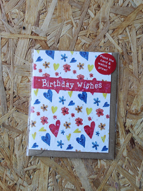 Birthday Wishes Plant Card