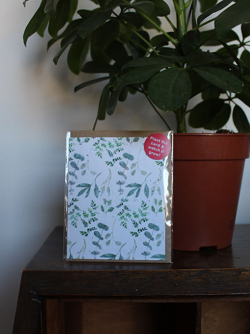 Plain Greenery Plant Card