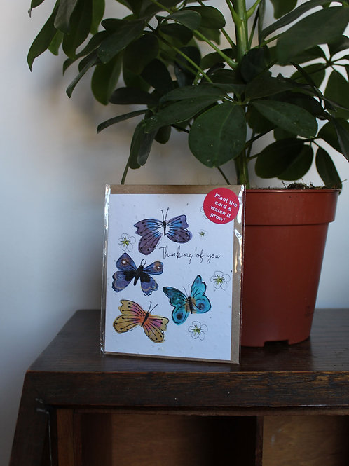 Thinking of You Butterfly Plant Card