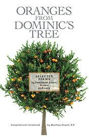 Oranges from Dominics Tree.jpg