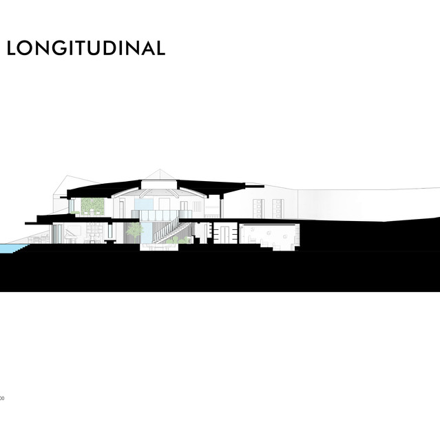 Section - Longitudinal
