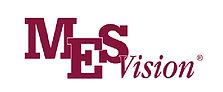 MES-Vision logo.jpg