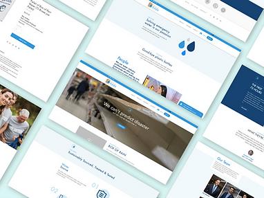 Box of Rain Website Design
