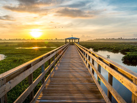 31st Annual Conference: Texas Wetlands
