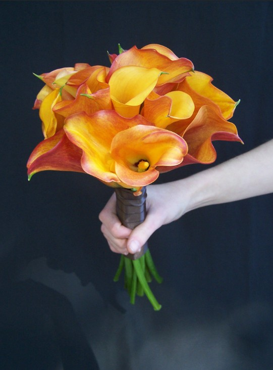 orange callas with chocolate wrap