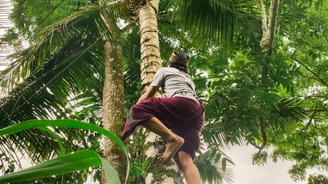 Bali Online Experience 24.jpg