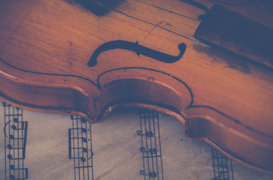 brown-violin-697672.jpg