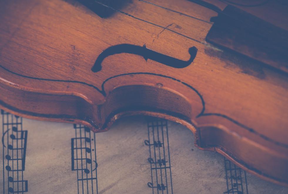 brown-violin-697672.jpg