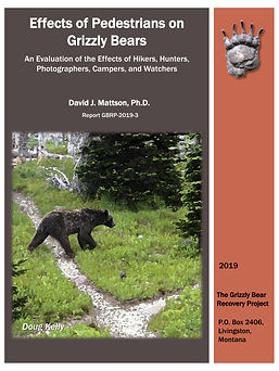 Pedestrians and bears cover back-1.jpg