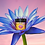 Thumbnail: Blue Lotus Flower Honey