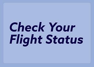 Flight Status.png