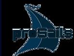 ProSails.png
