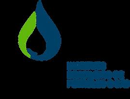 Logo_preferencial_cor_sem fundo - IBP.pn