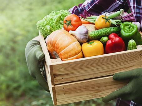 L'offrande des premiers fruits