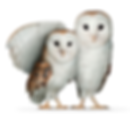 telus-wise-home-featured-critter.png