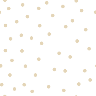 Brand Element 1 __ Dots.png