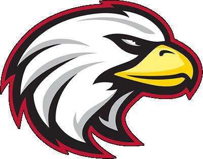 Focus Eagles Logo