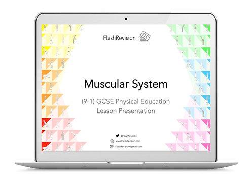(9-1) GCSE PE; Muscular System Lesson Presentation (PPT)