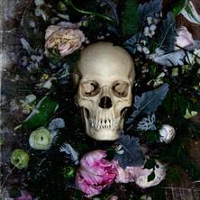 Death by Visioluxus