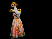 Sunflower by Visioluxus