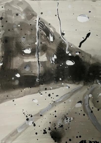 series #8 52cm x 38cm ink