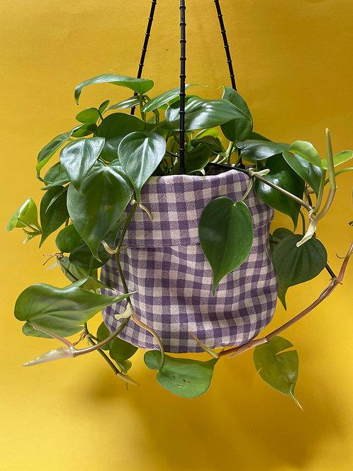 Medium plant+ small planter bundle