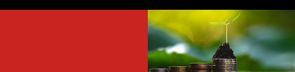 wix_ESG-header.jpg