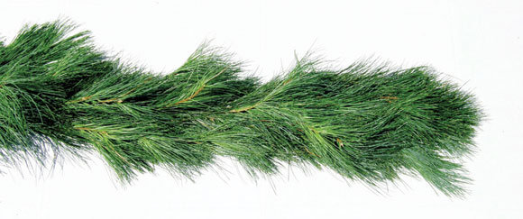 White Pine Garland: Choose your size