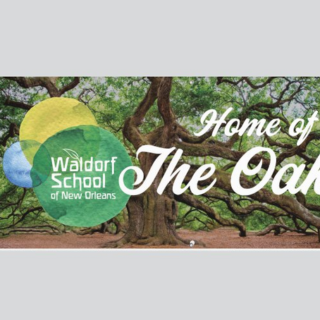 Our New Mascot: The WSNO Oaks!