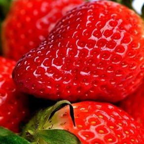 Strawberry Moon & Strawberry Shortcake