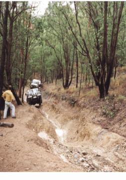 Trip Leaders Pics 2002 4.jpg
