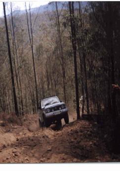Trip Leaders Pics 2002 11.jpg