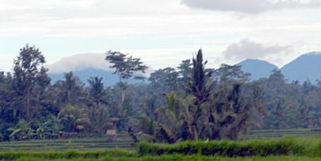 Return to Bali (2012 )