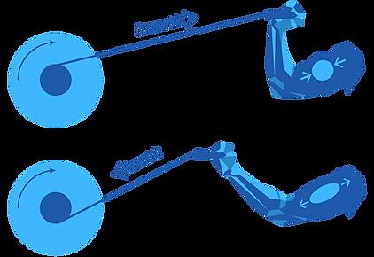 inertial flywheel training by Coneline