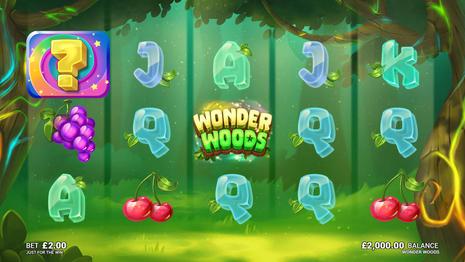 WonderWoods_Feature2.jpg