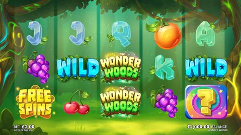 WonderWoods_BaseGame.jpg