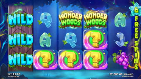 WonderWoods_Feature3.jpg
