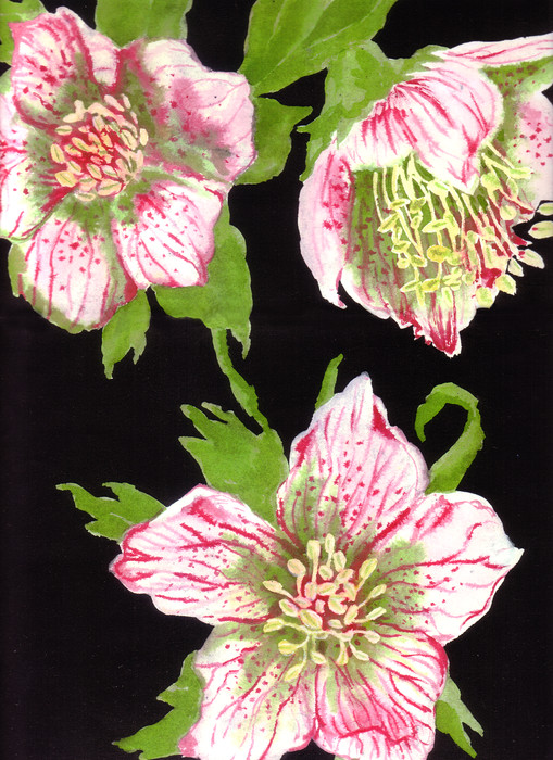 watercolor_lg_floral