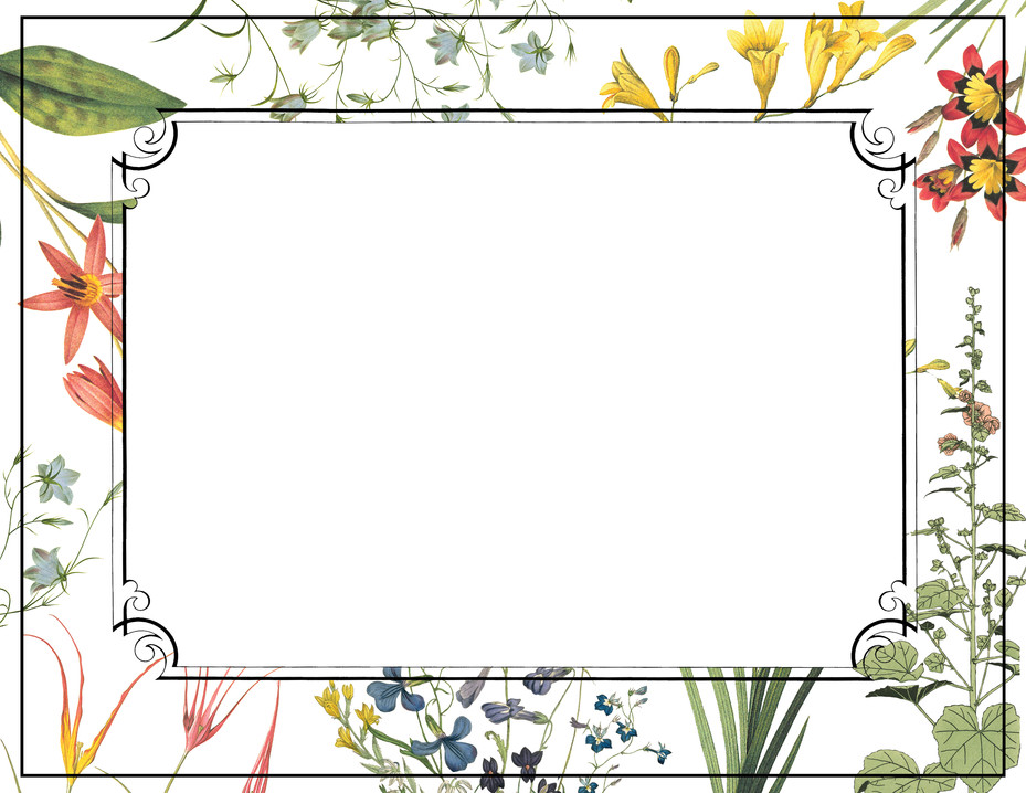 Gentleness-double framed
