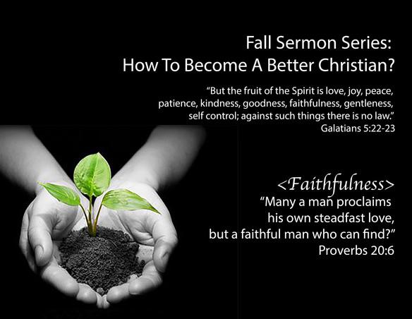 NLM_Poster_Faithfulness