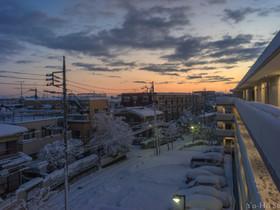 Biogonで撮る!東京×雪化粧