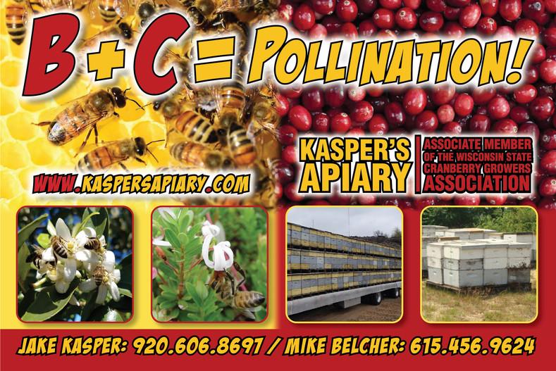 Kaspers Apiary postcard
