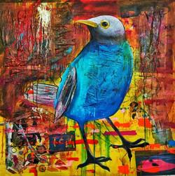 Blue Birdadee