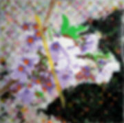 Flower Niban.jpg