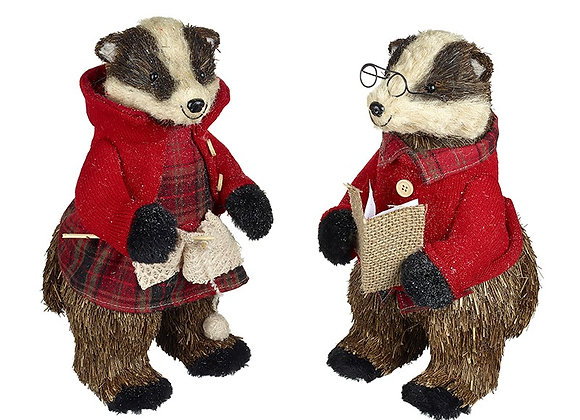 Mix Of 2 Badgers With Glasses And Book